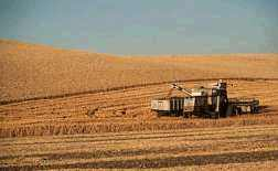A combine rig on the eastern Washington wheatlands.